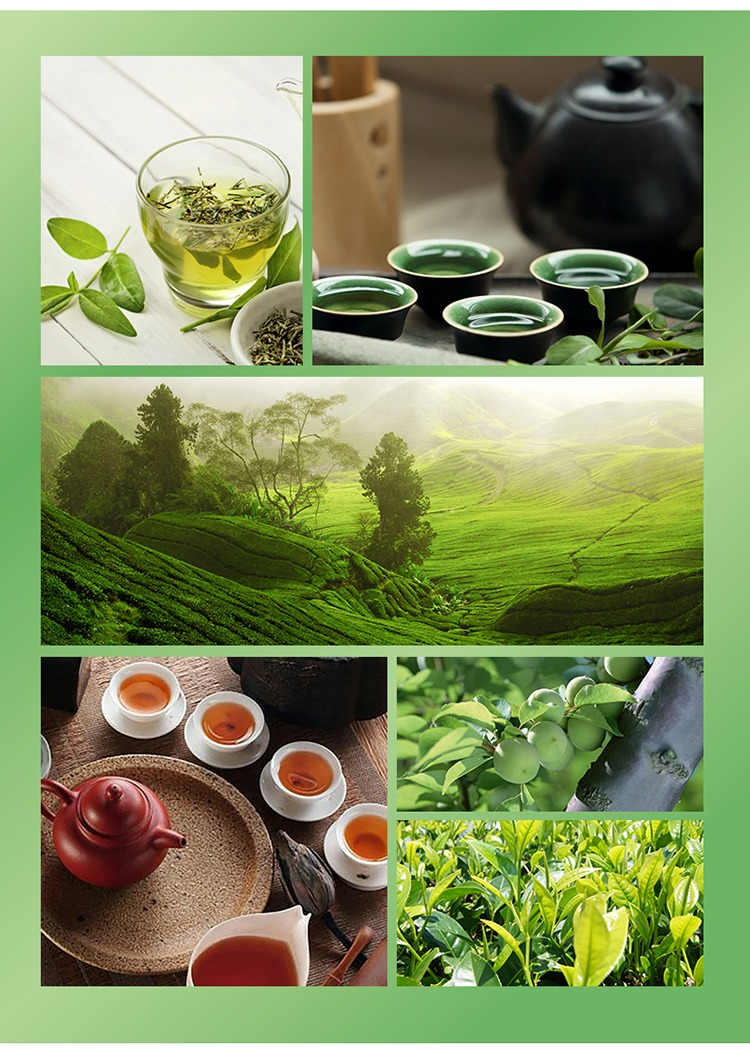 奇妙-康师傅冰橘绿茶06